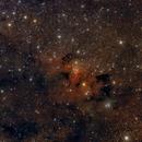 Caldwell 9, The Cave Nebula,                                Toni Mancera