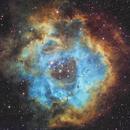 The Rosette Nebula,                                Kevin Ross