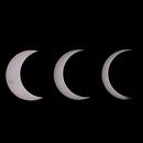 Annular eclipse collage,                                gmartin02