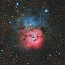Trifid Nebula,                                Adam Ament