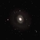 M94, The two-ringed galaxy in Canes Venatici,                                Steven Bellavia