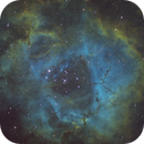 Rosette Nebula,                                Geoff Smith