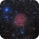 IC5146 - The Cocoon Nebula,                                Salvatore Grasso