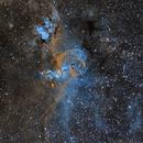 NGC 3576 - Statue of Liberty Nebula,                                Anne-Maree McComb