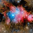 Fox Fur and Christmas Tree Nebula,                                Jim DeLillo