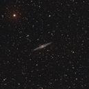 NGC891,                                Nick's Astrophotography