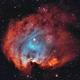 NGC 2174 (Monkey Head Nebula),                                  Jonathan Piques