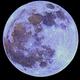 Full Moon on 12/12,                                Dan Broyles