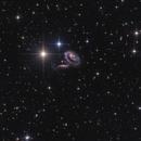 ARP 273 (UGC 1810 - 1813),                                sky-watcher (johny)