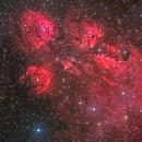 Cat's Paw Nebula (NGC 6334),                                Miles Zhou