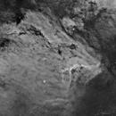 Pelican Nebula IC 5070 and IC 5067,                                David Wills (PixelSkies)