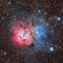 M20 - Trifid Nebula - Sagittarius's Flower,                                Wellerson Lopes
