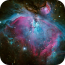 M42 from Dark Sky Site,                                tjschultz2011
