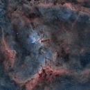 Heart nebula,                                casamoci