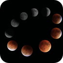 Supermoon Eclipse Collage,                                  Michael Southam