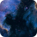 Cygnus wall & IC5067,                                Giovanni Vandelannoote