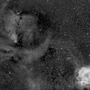 Ha of NGC2264 (Christmas Tree Cluster and Cone Nebula) and the Rosette Nebula,                                Steven Christensen