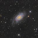 NGC 2403,                                Epicycle