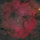 IC1396,                                Rabbit Zhang