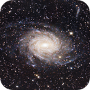 NGC 6744 in Pavo, OSC 6x45sec!,                                Alexander Weigand