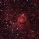IC1795 - The Fishhead Nebula,                                Michel FLEUREAU