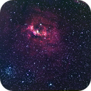 NGC7635 bubble nebula,                                Richard O
