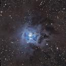 The Iris Nebula,                                Adam Jaffe