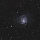 Pinwheel Galaxy M101,                                Michael Völker