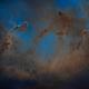 IC 1396 - Starless Elephant Trunk Wide View in Fullframe,                                Chen Wu