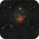 Dusty NGC1579,                                Ron Crouch