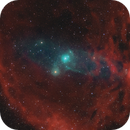 The Flying Bat & Squid Nebulae, Sh2-129, Ou 4,                                Mark L Mitchell