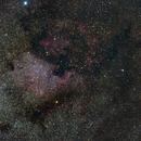 North America Nebula (NGC 7000) wide field,                                rdk_CA