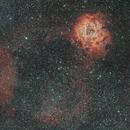 Rosette wide field,                                John Sim