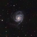 Pinwheel Galaxy,                                Ross Walker