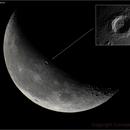 Copernicus in two views,                                Conrado Serodio