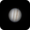 Jupiter Io Transit,                                starlord