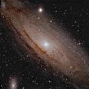 M31, primer for a future mosaic,                                John Landreneau
