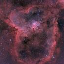 IC 1805 Heart Nebula in HOO RGB,                                Jean-François Douroux