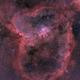IC 1805 Heart Nebula in HOO RGB,                                Jean-François Dou...