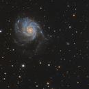 M101 Pinwheel Galaxy,                                nicolabugin