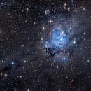 NGC 7129,                                tonyhallas