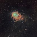 NGC7538 Emission and Reflection Nebula,                                niteman1946
