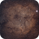 Elephant trunk nebula - first light, new setup,                                Andrea Bergamini
