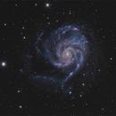M101 stp 1 - crop,                                Piero Venturi