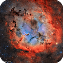 IC 1396 - Nébuleuse de la trompe d'éléphant - HaOO,                                Séb GOZE