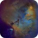 Cone and Christmas Tree Cluster, NGC 2264, Hubble Palette,                                Eric Coles (coles44)