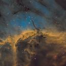 IC5070 SHO,                                Michael Taube