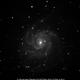 M 101 - NGC 5457 - Arp 26 - Pinwheel face-on Sp. Gal. in Uma,                                roelb
