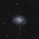 NGC 300,                                Ignacio Diaz Bobillo