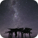 Galactic Shelter,                                Ariel Cappelletti